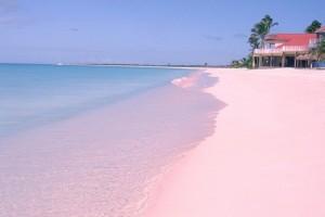 Pink-Beach-of-Barbuda