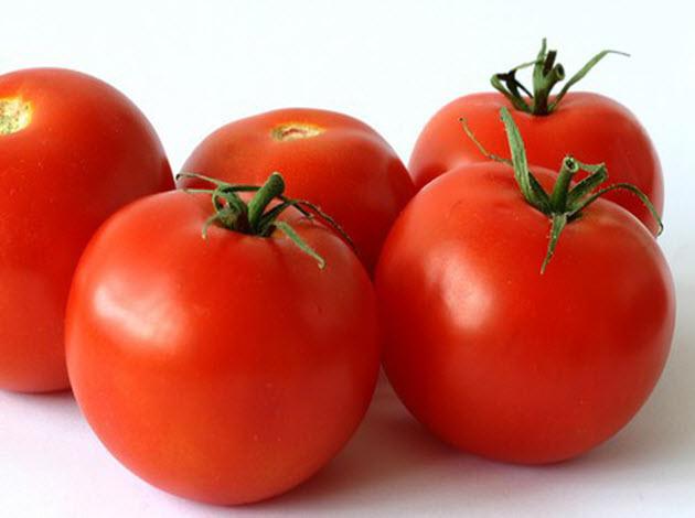 Tomato-India