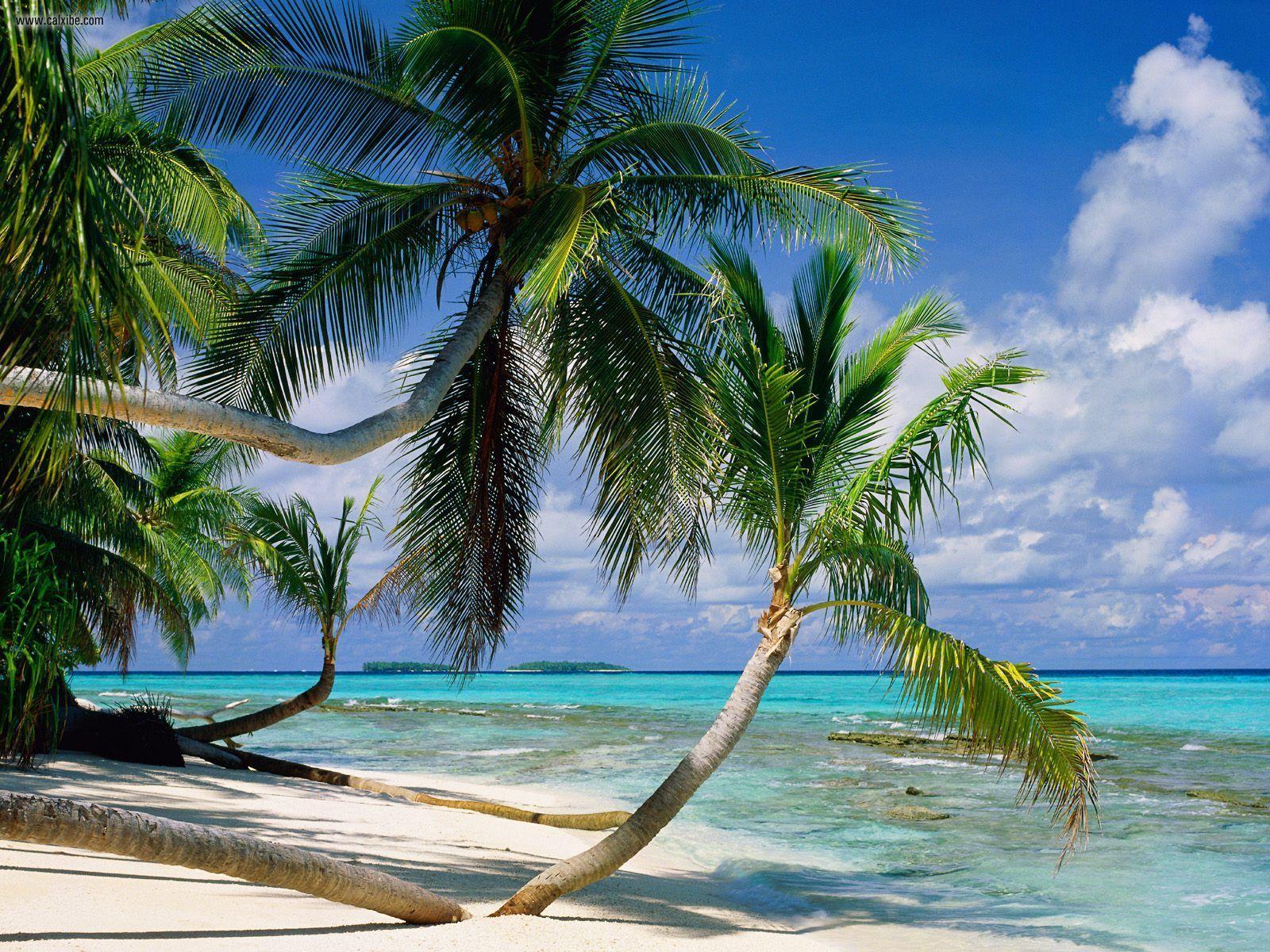 tuvalu-strand